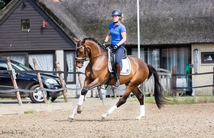 Marlous en Jiwemmo door naar regiokampioenschappen Groningen