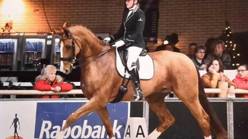 Door naar regionale kampioenschappen Drenthe